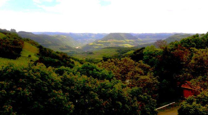 Degustando a Vida na Serra Gaúcha, Cave Geisse