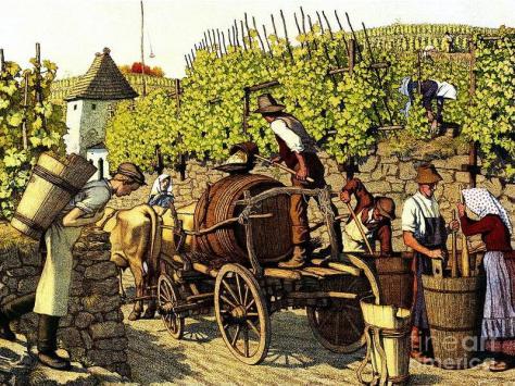 grape harvest 1890 - Padre Art