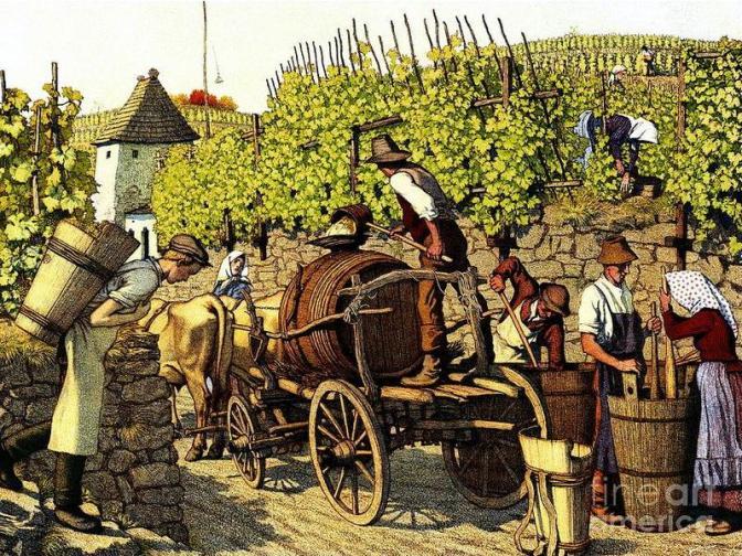A festa anual do vinho, uma fábula de Esopo
