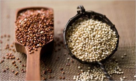 quinoa_topic600 Andrew Scrivani